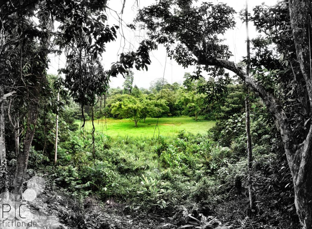 Panoramas_Landscape Nature